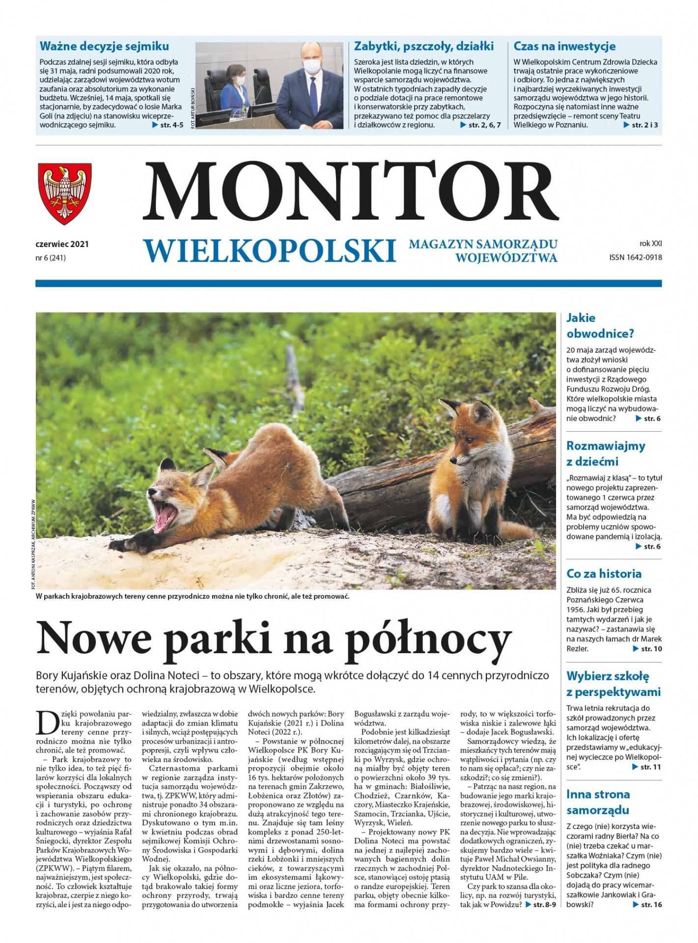 monitor-czerwiec-01.jpg